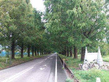 琵琶湖0215.JPG