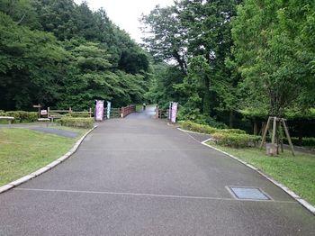 城山公園ぬ.jpg