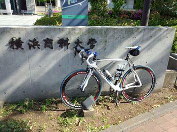 横浜商科大学・みどりキャンパス.jpg