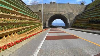 ニライ・カナイ橋s.jpg